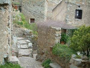 Sant'Antonino - Small stone stairway, plants, flowers and stone houses in the village (in the Balagne region)