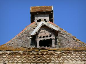 Sarrant - Cupola of the dovecote of Léhant