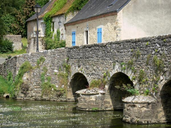 Guide of the Sarthe - Tourism, holidays & weekends in the Sarthe
