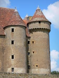 Sarzay castle - Towers of the medieval fortress