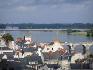 Saumur - Roofs of the houses of the city, the Loire River, bridges, trees along the water (Loire valley)
