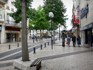 Saumur - Shopping street with its shops, its pavements, its lampposts and its trees