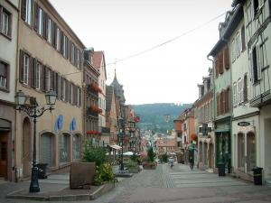 Saverne - Grand'Rue (high street) with its old houses, forest in background