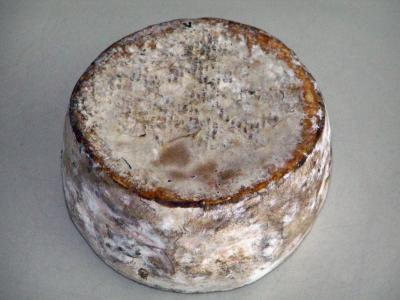 Savoie Tomme cheese