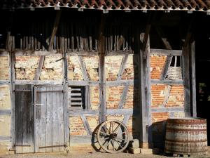 Savoyard Bresse - Forest farm-museum: facade of the Bressan farmhouse; in Courtes