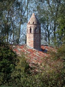 Savoyard Bresse - Saracen chimney of Grange du Clou (Bressan farmhouse) surrounded by trees; in Saint-Cyr-sur-Menthon