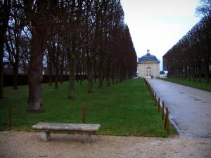 Sceaux park - Bench in foreground and path lined with trees