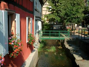 Scherwiller - Colourful half-timbered houses decorated with geranium flowers (geraniums) by the River Aubach, small bridge, tree and flower-bedecked bank