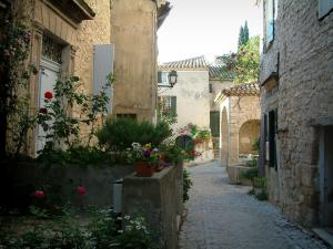 Séguret - Narrow street paved with stone houses decorated with flowers, rosebushes and plants