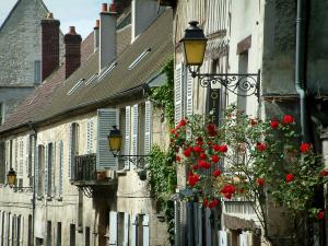 Senlis - Houses facades with rosebush (red roses) and lampposts