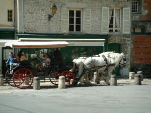 Senlis - Notre-Dame square with a carriage hitched by two white horses and houses of the ancient city
