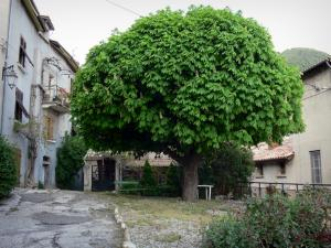Serres - Small square featuring a chestnut tree and houses of the village