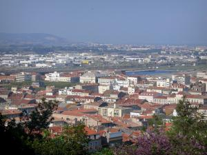 Sète - From the Saint-Clair mountain, view of the roofs of houses and buildings of the city