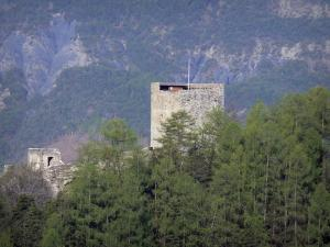 Seyne - Watchtower, trees and mountain