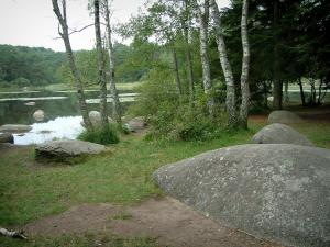 Sidobre - Shore with granite rocks (blocks) and trees, the Merle lake and forest in background in the Upper Languedoc Regional Nature Park