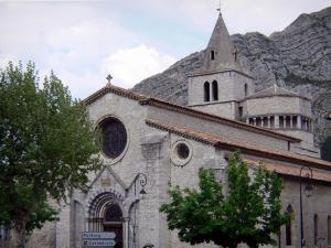 Sisteron - Notre-Dame-des-Pommiers cathedral, trees and rock faces