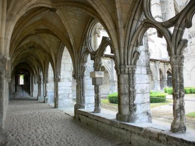 iglesias y catedrales de francia gu a fotos informaciones turismo. Black Bedroom Furniture Sets. Home Design Ideas