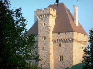 La Souche castle - Keep of the La Souche castle; in the town of Doyet