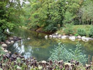 La Source floral park - Source of the Loiret river and trees along the water