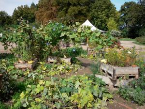 La Source floral park - Vegetable garden