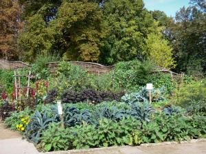 La Source floral park - Vegetable garden and trees