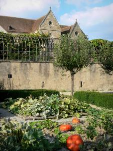 Souvigny priory - Saint-Pierre et Saint-Paul priory church, and pumpkins in the garden of the priory
