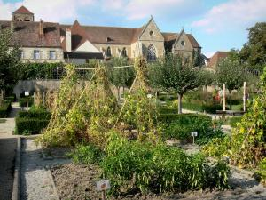 Souvigny priory - Garden of the Souvigny priory, convent buildings and Saint-Pierre et Saint-Paul priory church