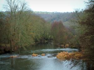 Suisse Normande - Orne valley: river, trees and forest