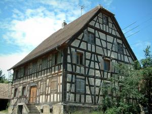 Sundgau - Half-timbered house and a tree (village of Riespach)