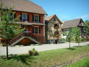 Sundgau - Trees and houses decorated with flowers and half-timberings (village of Hirtzbach)