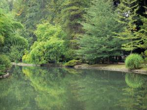 Tarbes - Massey garden (English landscape park): pond lined with trees