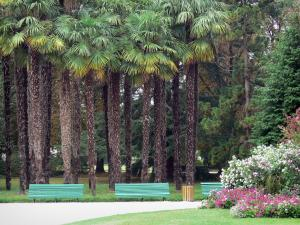 Tarbes - Massey garden (English landscape park): palm trees, flower beds and benches