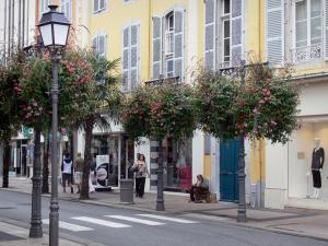 Tarbes - Street, facades of houses, shops, lamp post and flowers