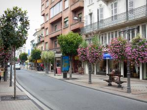 Tarbes - Shopping street, buildings, shops and hanging flowers