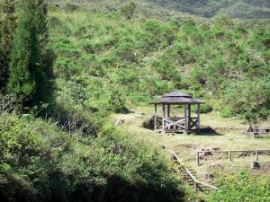 Tévelave forest - picnic kiosk surrounded by vegetation