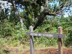 Tévelave forest - Sign for the Ouvriers trail