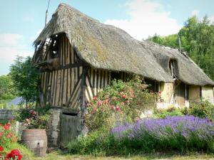 Thatched Cottage Route - Half-timbered cottage surrounded by flowers; in the heart of Vernier marsh, in the Norman Seine River Meanders Regional Nature Park