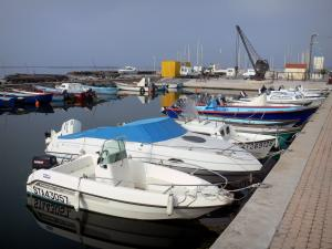Thau lake - Boats of the port of Bouzigues and the Thau lake