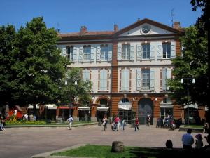 Toulouse - Saint Georges square with house, shops and trees