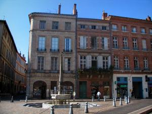 Toulouse - Fountain, houses and shops of the Saint-Etienne square