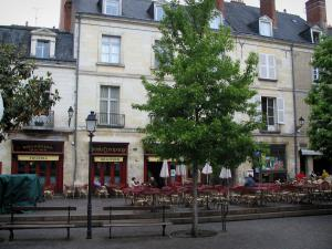 Tours - Houses, café terrace and trees of the Plumereau square