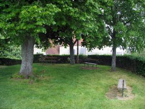 Trôo - Trees and benches at the peak of the mound