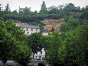 Trôo - Trees, cliff and houses of the troglodyte village