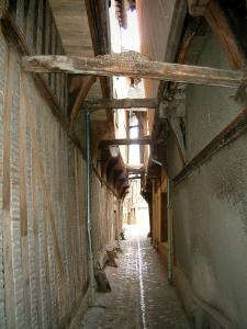 Troyes - Ruelle des Chats (very narrow path)