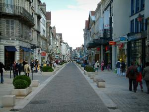 Troyes - Lively shopping street lined with shops