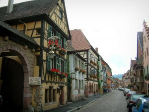 Turckheim - Street, half-timbered houses and facades decorated with wine growers' shop signs