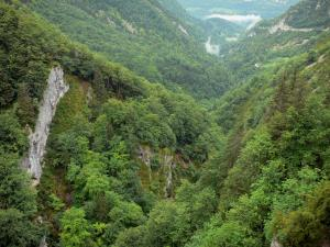 Upper Jura Regional Nature Park - Flumen gorges, trees