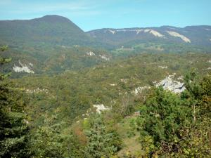Upper Jura Regional Nature Park - Jura mountain range: mountainous landscape covered with forests
