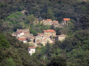 Upper Languedoc Regional Nature Park - Houses of a hamlet in the middle of the forest (trees)