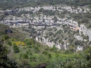 Upper Languedoc Regional Nature Park - Rock faces (cliffs), shrubs and trees